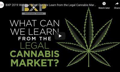 Cannabis webinar graphic