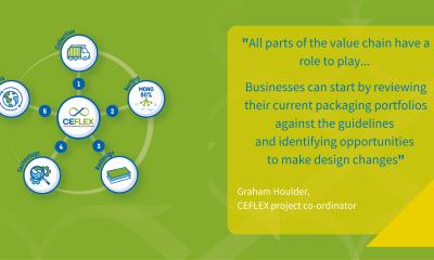 CEFLEX design guidelines